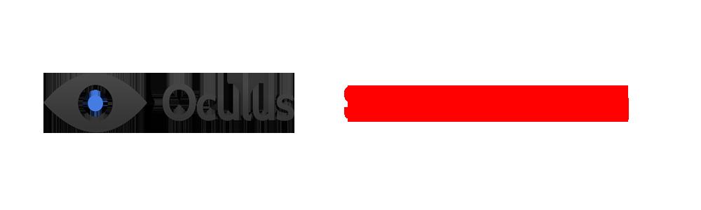 Oculus SDK 0.4.3 Beta